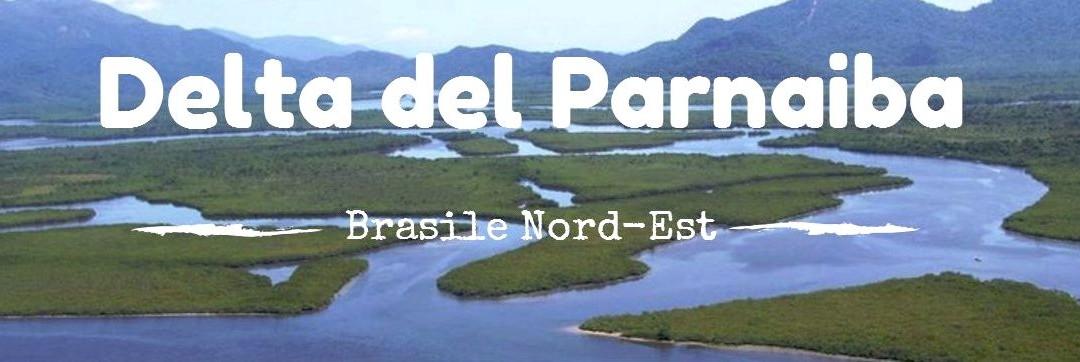 Brasile: sul Delta do Parnaíba tra caranguejos e jacarès